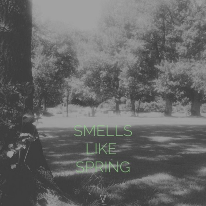 VARIOUS - Smells Like Spring