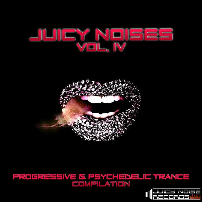 VARIOUS - Juicy Noises Vol 4