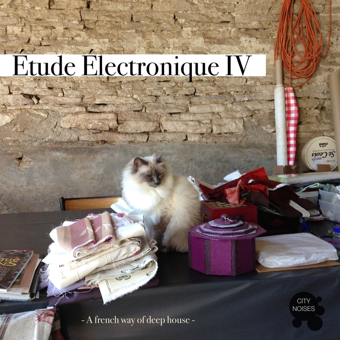 VARIOUS - Etude Electronique IV (A French Way Of Deep House)