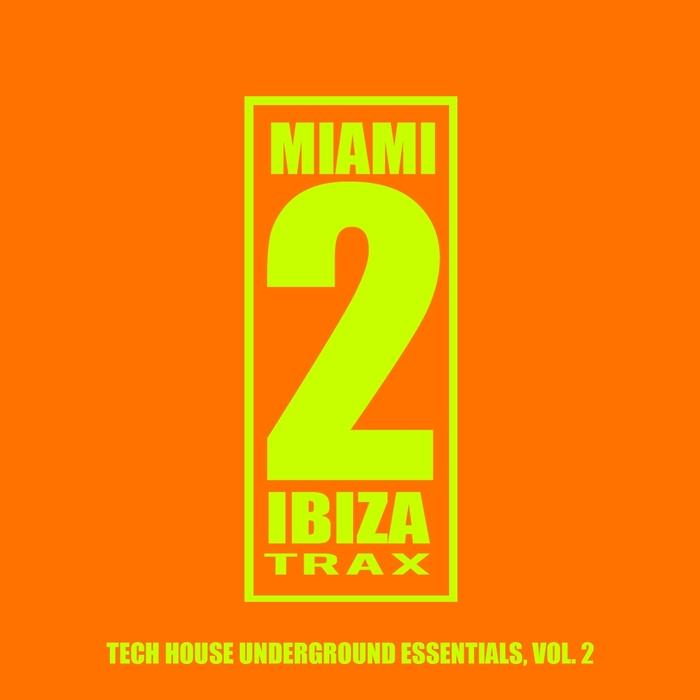 VARIOUS - Tech House Underground Essentials Vol 2