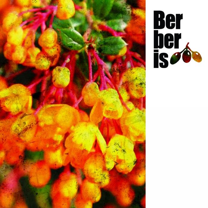 CHRISTIAN BELT - Samba EP
