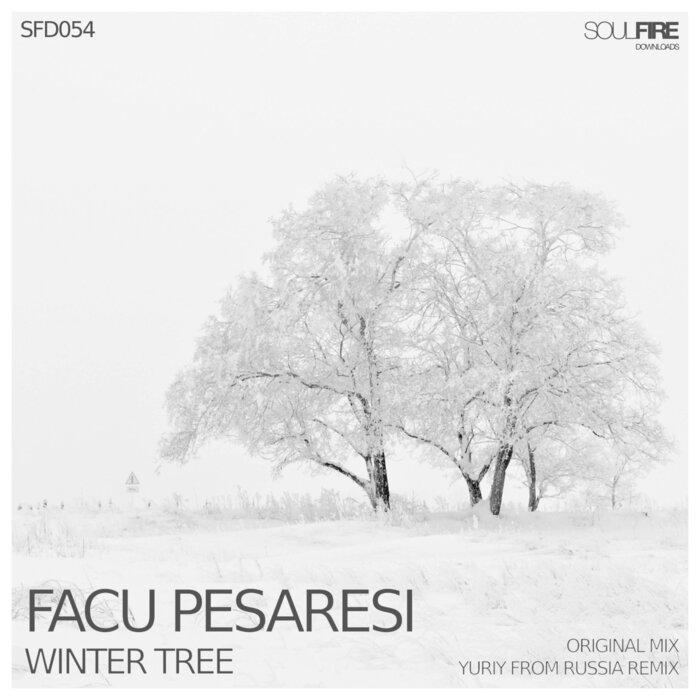 FACU PESARESI - Winter Tree