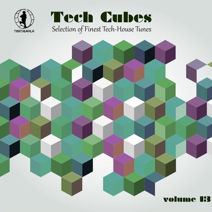 VARIOUS - Tech Cubes Vol 13 (Selection Of Finest Tech-House Tunes!)