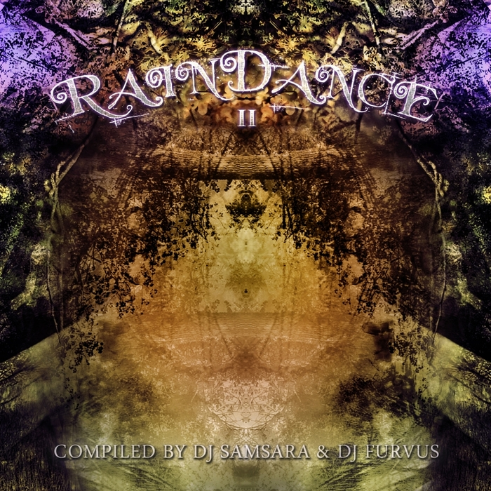 VARIOUS - Raindance II