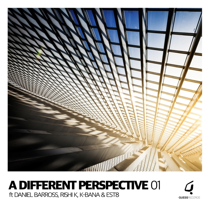 ANDY HOLDER/ASYMMETRIC SOUL/SPIRITCHASER - A Different Perspective 01