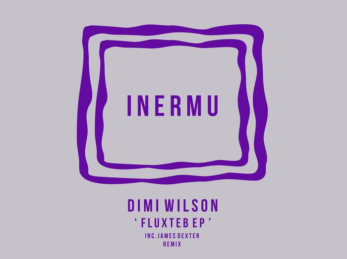 DIMI WILSON - Fluxteb EP