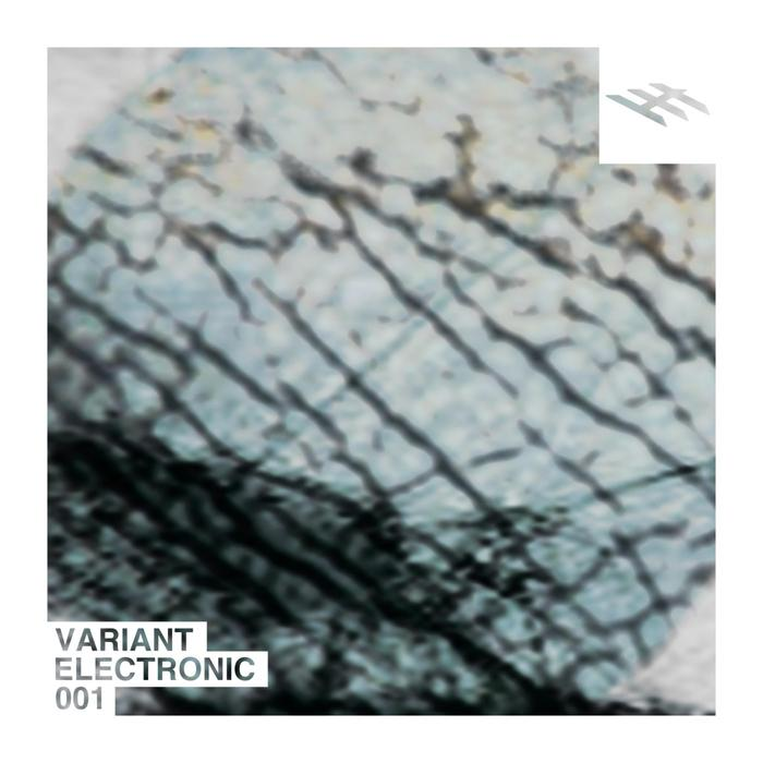 LUKE CREED/ANOTHER ALIAS/SKIN/RVDE - Variant Electronic 001