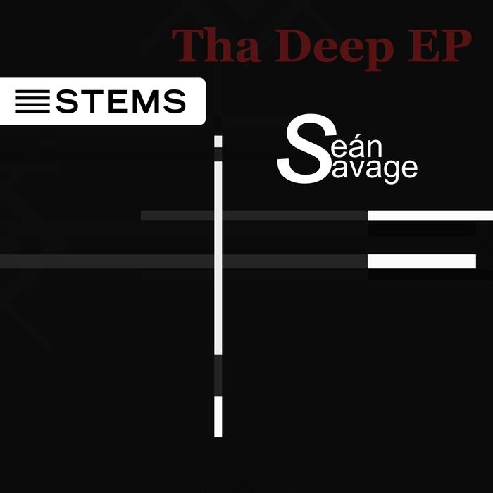 SEAN SAVAGE - ReGroove EP