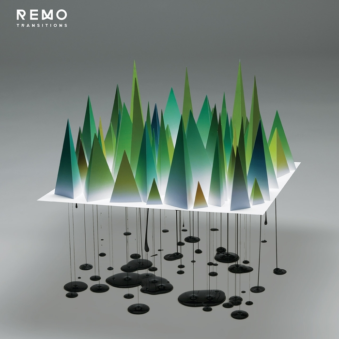 REMO - Transitions
