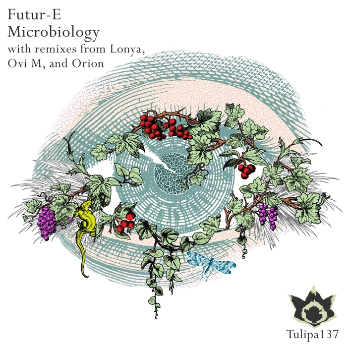 FUTUR-E - Microbiology