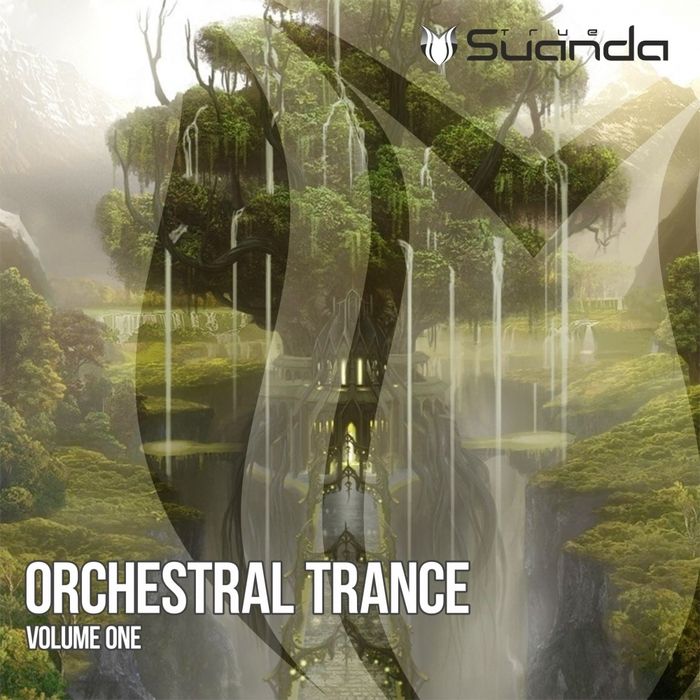 VARIOUS - Orchestral Trance