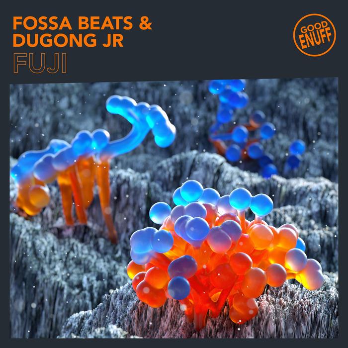 FOSSA BEATS - Fuji