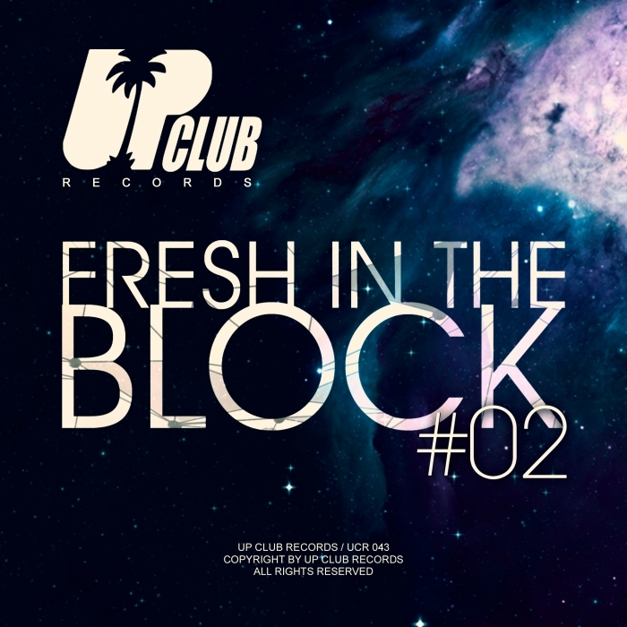 VARIOUS - Fresh In The Block Vol 2