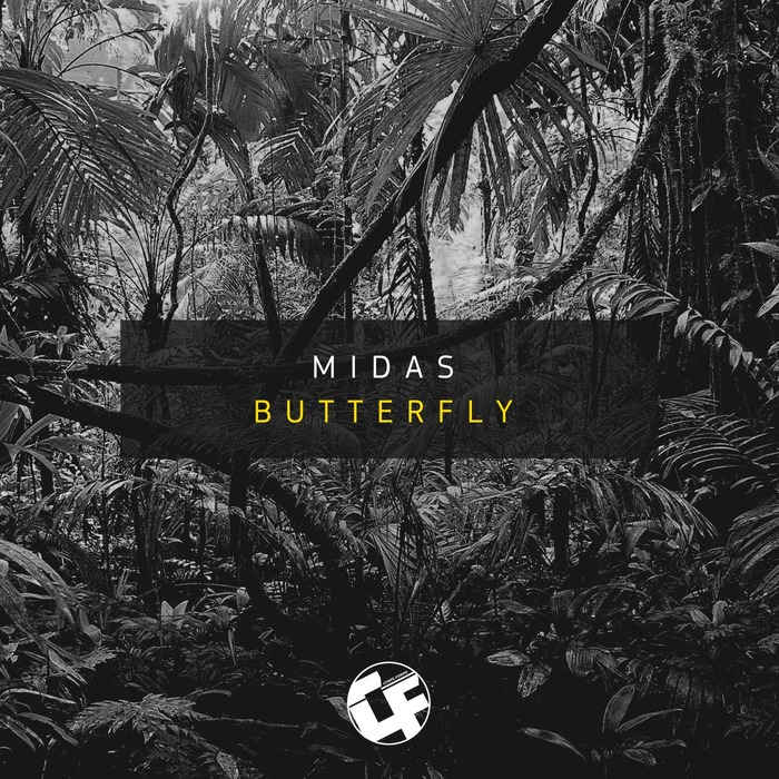 MIDAS - Butterfly