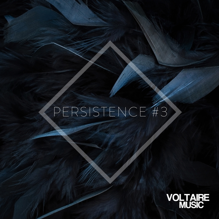 VARIOUS - Voltaire Music Presents Persistence #3