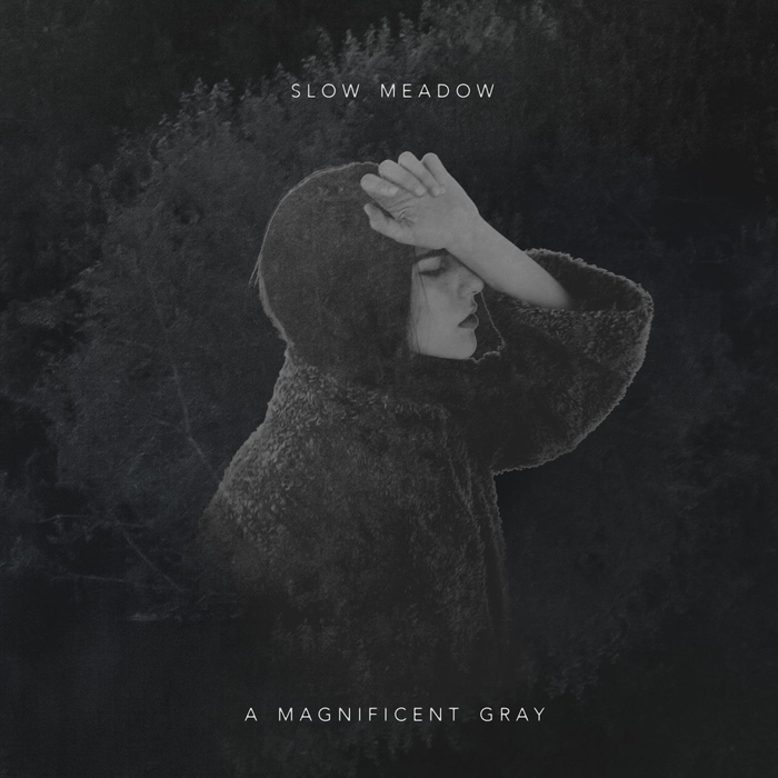 SLOW MEADOW - A Magnificent Gray