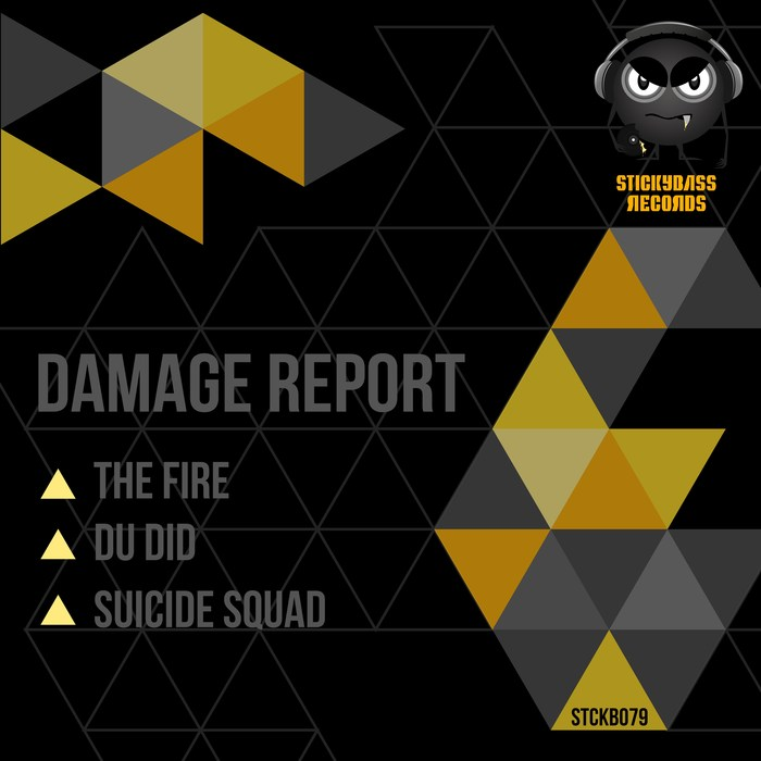 DAMAGE REPORT - The Fire