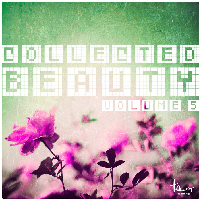 VARIOUS - Collected Beauty Vol 5