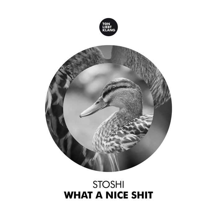 STOSHI - What A Nice Shit
