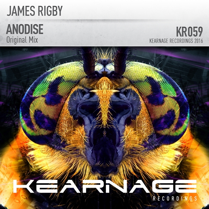 JAMES RIGBY - Anodise
