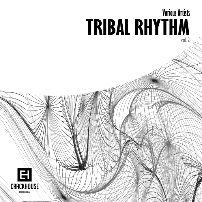 VARIOUS - Tribal Rhythm Vol 2