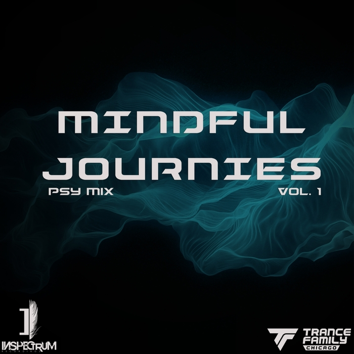 PSY/VARIOUS - Mindful Journies Vol 1 (unmixed tracks)