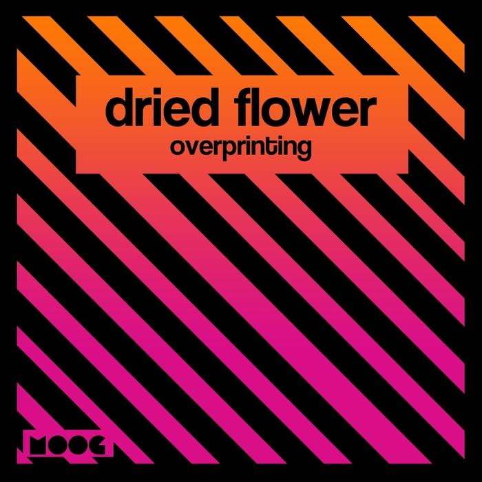 DRIED FLOWER - Overprinting
