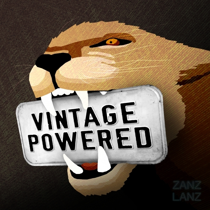 ZANZLANZ - Vintage Powered