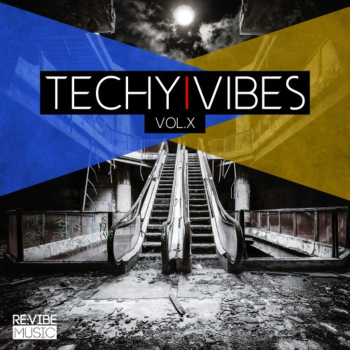 VARIOUS - Techy Vibes Vol 10