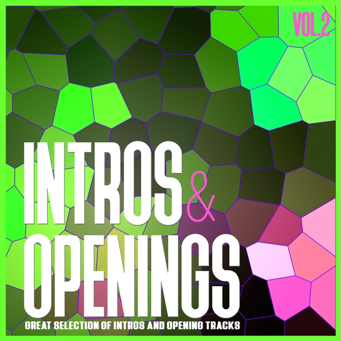 VARIOUS - Intros & Openings Vol 2/Great Selection Of Intros & Opening Tracks