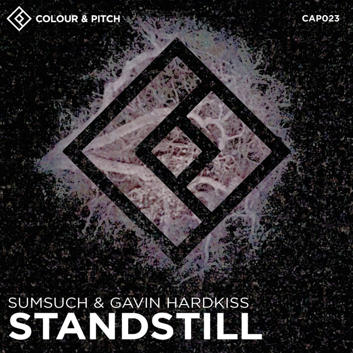 GAVIN HARDKISS/SUMSUCH - Standstill