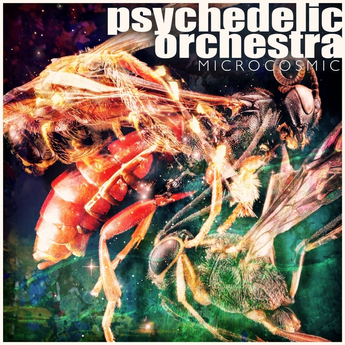 PSYCHEDELIC ORCHESTRA - Microcosmic