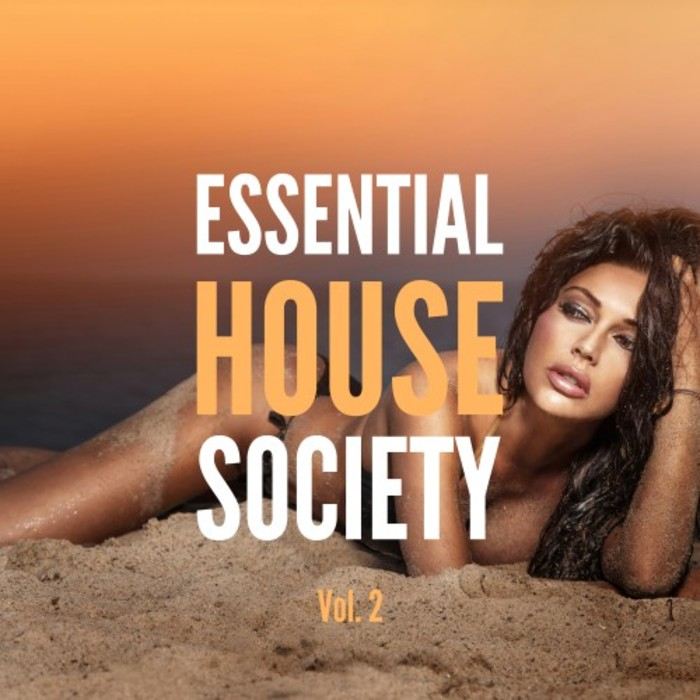 VARIOUS - Essential House Society Vol 2