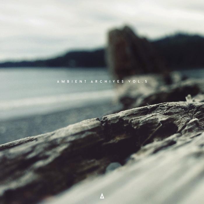 SHUTA YASUKOCHI/SURROUNDYOU/SLOW CLINIC/LOGIC MOON - Ambient Archives Vol 5