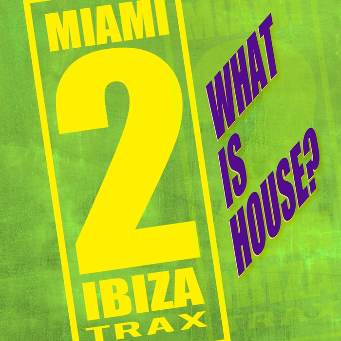 JASON RIVAS/HOT POOL/ACID KLOWNS FROM OUTER SPACE/MAGZZETICZ/YAMATO DAKA/KENJI SHK/HOT POOL/DIE FANTASTISCHE HUBSCHRAUBER/GYME4000 - What Is House?