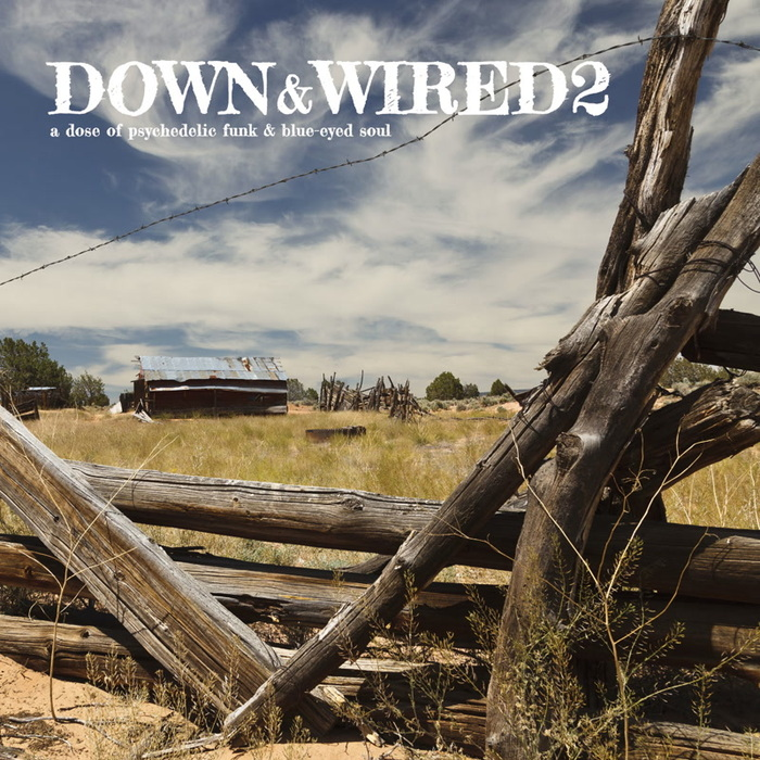 VARIOUS - Down & Wired 2