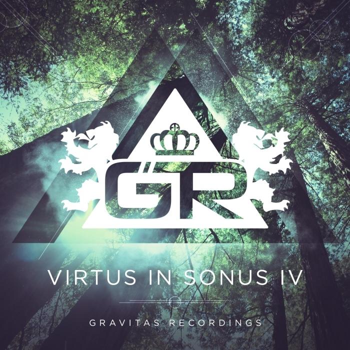 VARIOUS - Virtus In Sonus IV