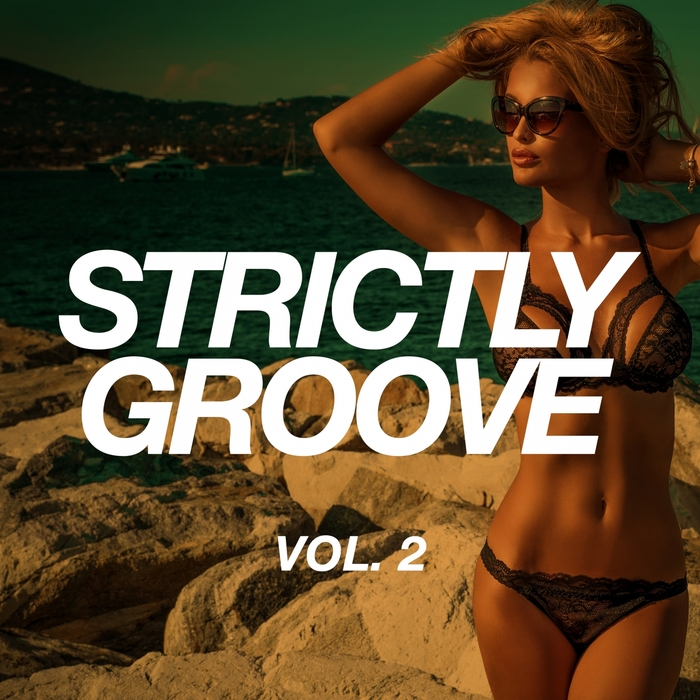VARIOUS - Strictly Groove Vol 2