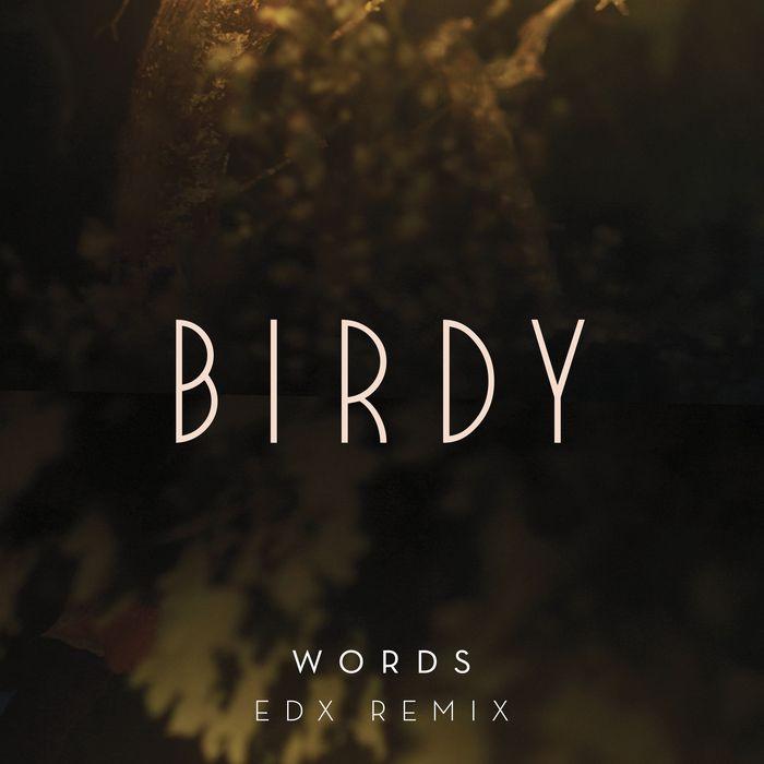 BIRDY - Words (EDX Remix)