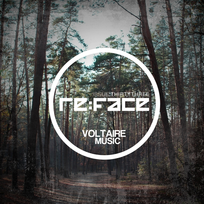VARIOUS - Re:Face Issue #33