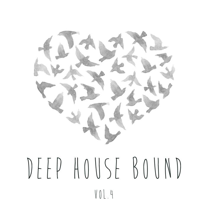 VARIOUS - Deep House Bound Vol 4