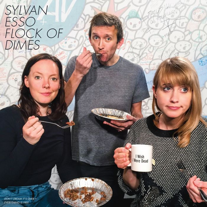 FLOCK OF DIMES/SYLVAN ESSO - Don't Dream It's Over / Everything Is Free