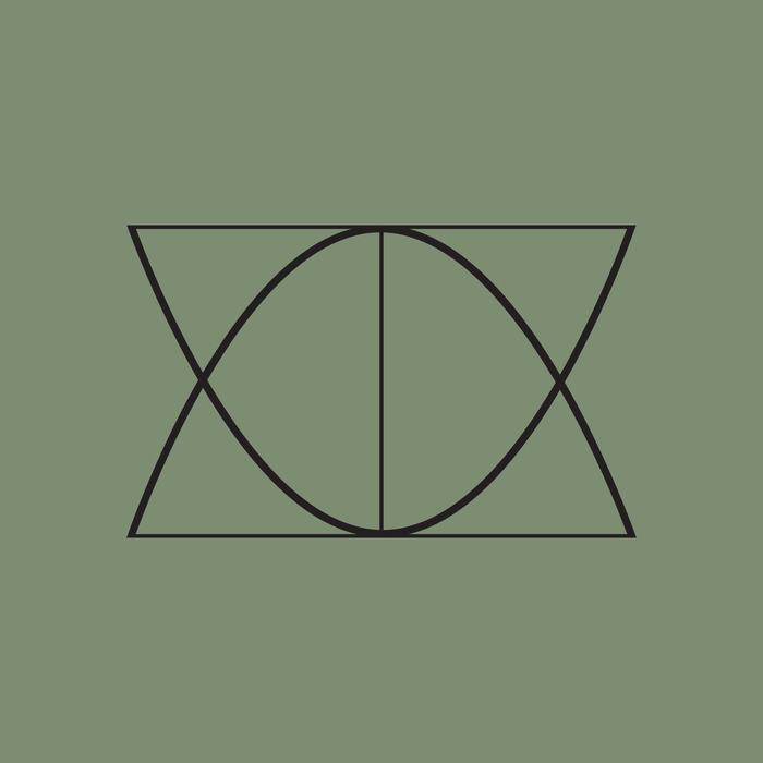 SWEDISH NAAN BOYS/JESPER DAHLBACK/NIMA KHAK - The Great Wisdom Of D