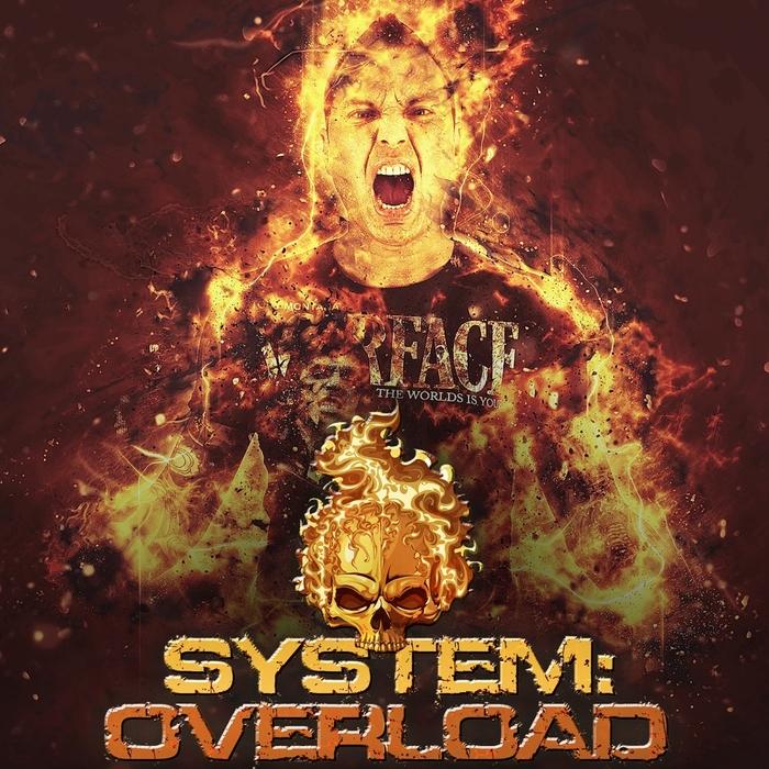 SYSTEM OVERLOAD - System Overload