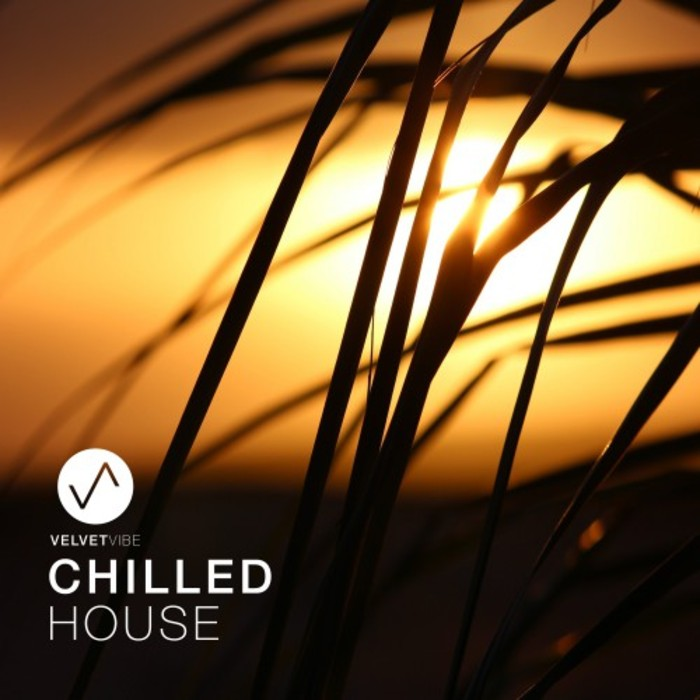 VARIOUS - Chilled House