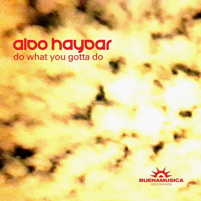 ALDO HAYDAR - Do What You Gotta Do