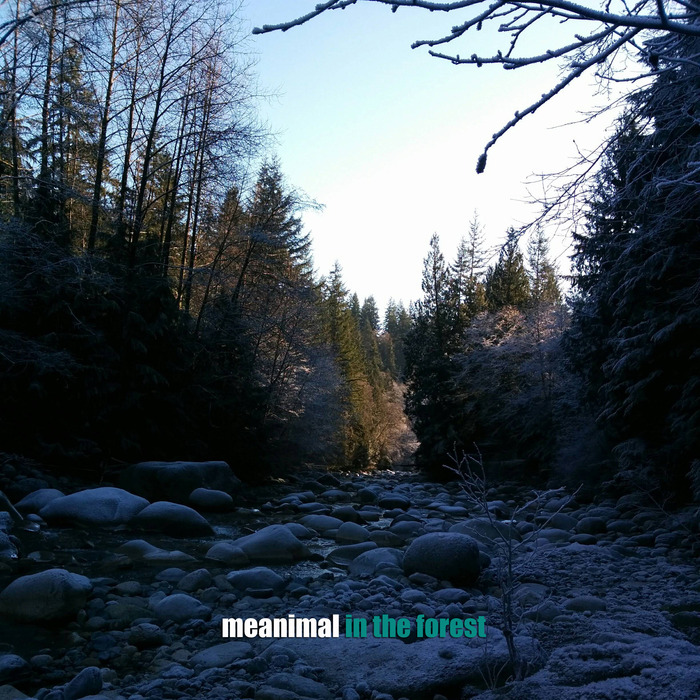 MEANIMAL - In The Forest