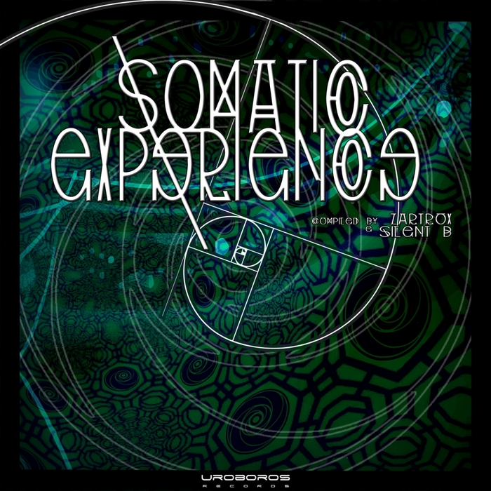 VARIOUS - Somatic Experience