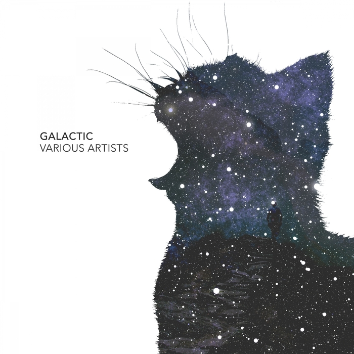 MAJESTIM/MALAKY/IDENTIFIED/SEMI SENSE/ELKA/NOCTILUCENT/TRIATIK/ELCOST - Galactic