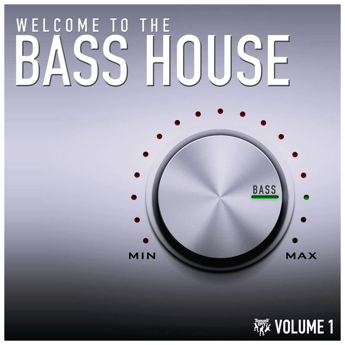 VARIOUS - Welcome To The Bass House